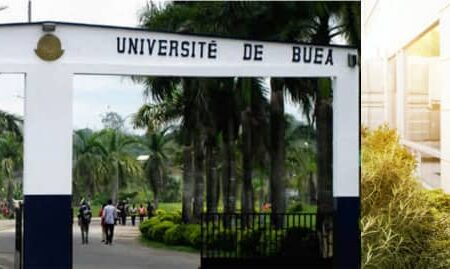 Professional Masters in the University of Buea